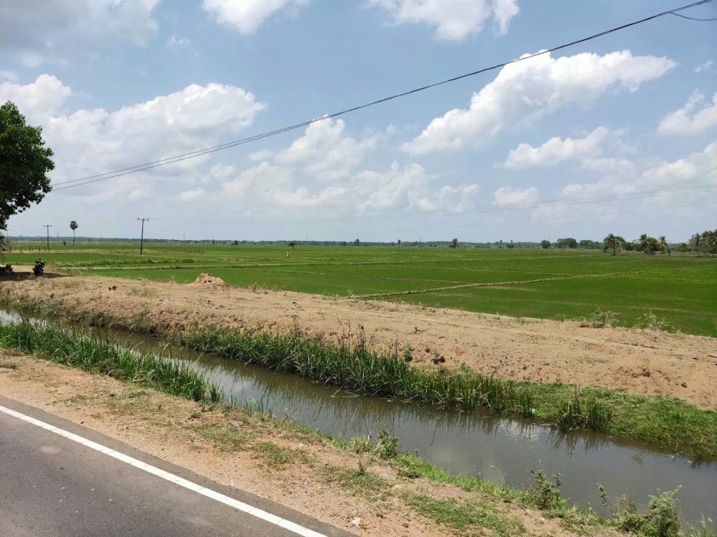 ハバラーナトリンコマリーバスからの景色2