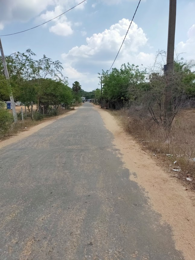 カンニヤ温泉の道2