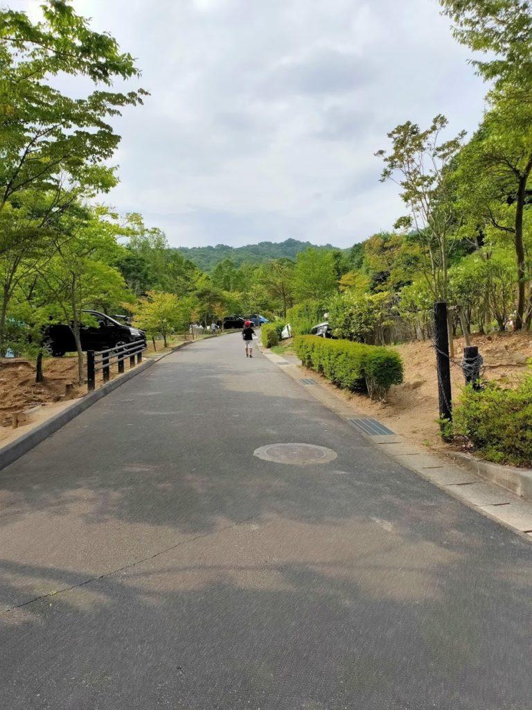 憩いの森公園オートキャンプサイト