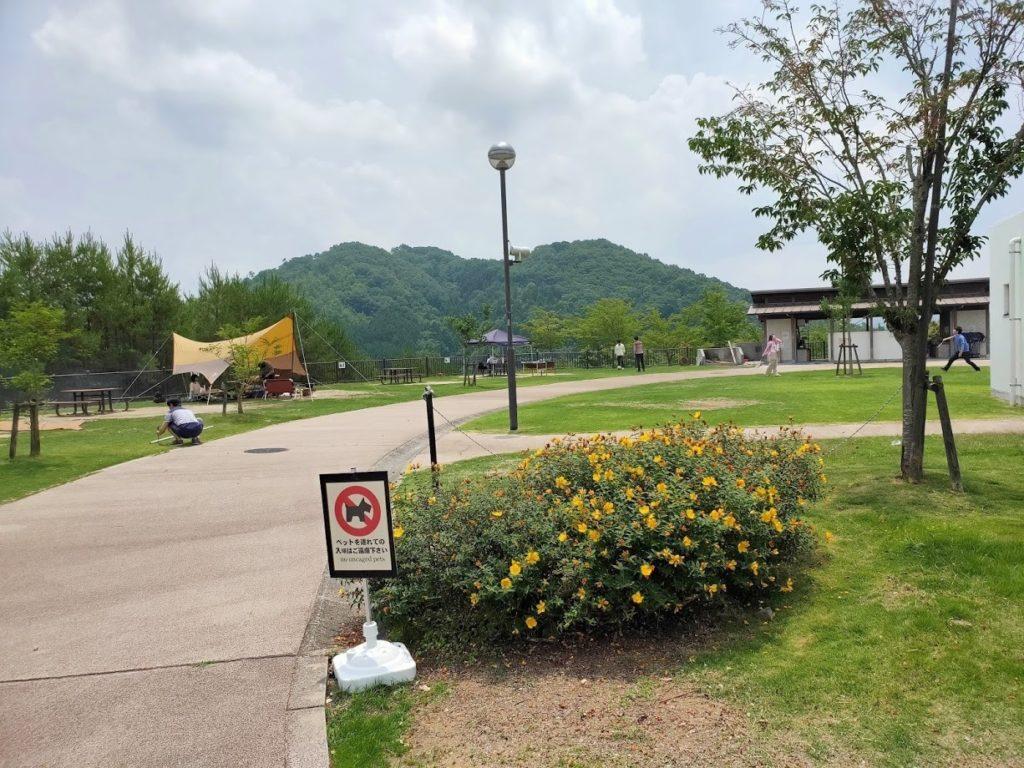 道の駅湖畔の里福富のデイキャンプ場