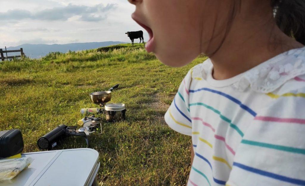 姫鶴平キャンプ場で牛を食べる