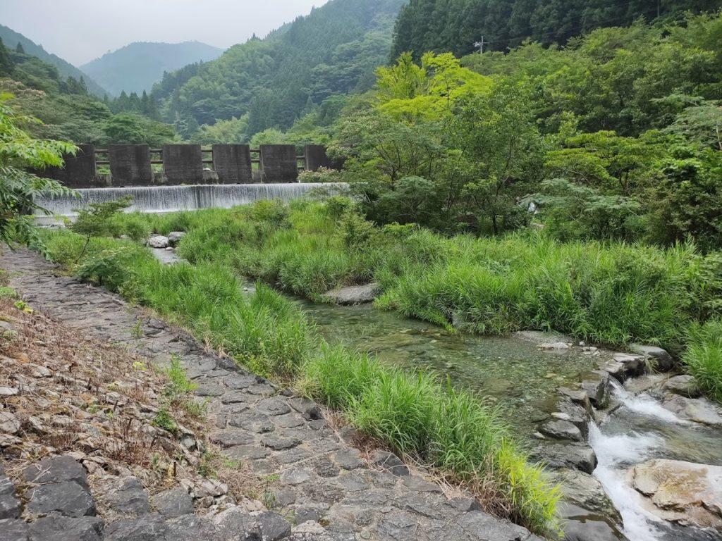 夢の森公園キャンプ場で川の景色