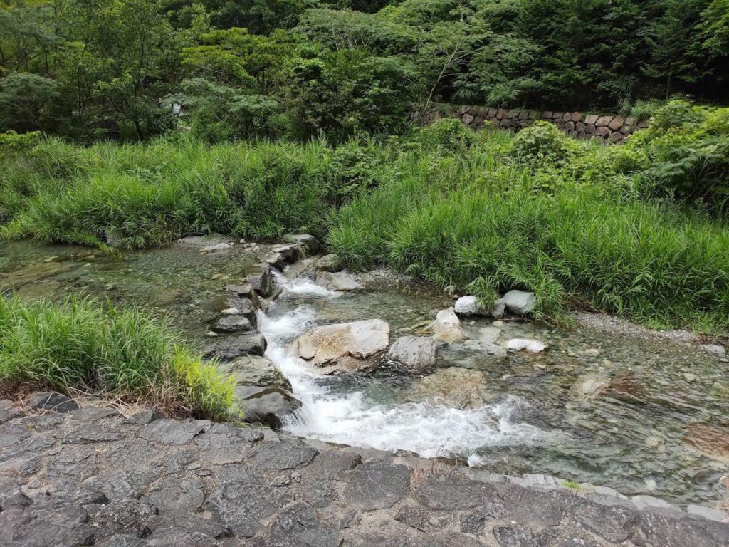 夢の森公園キャンプ場での横の川