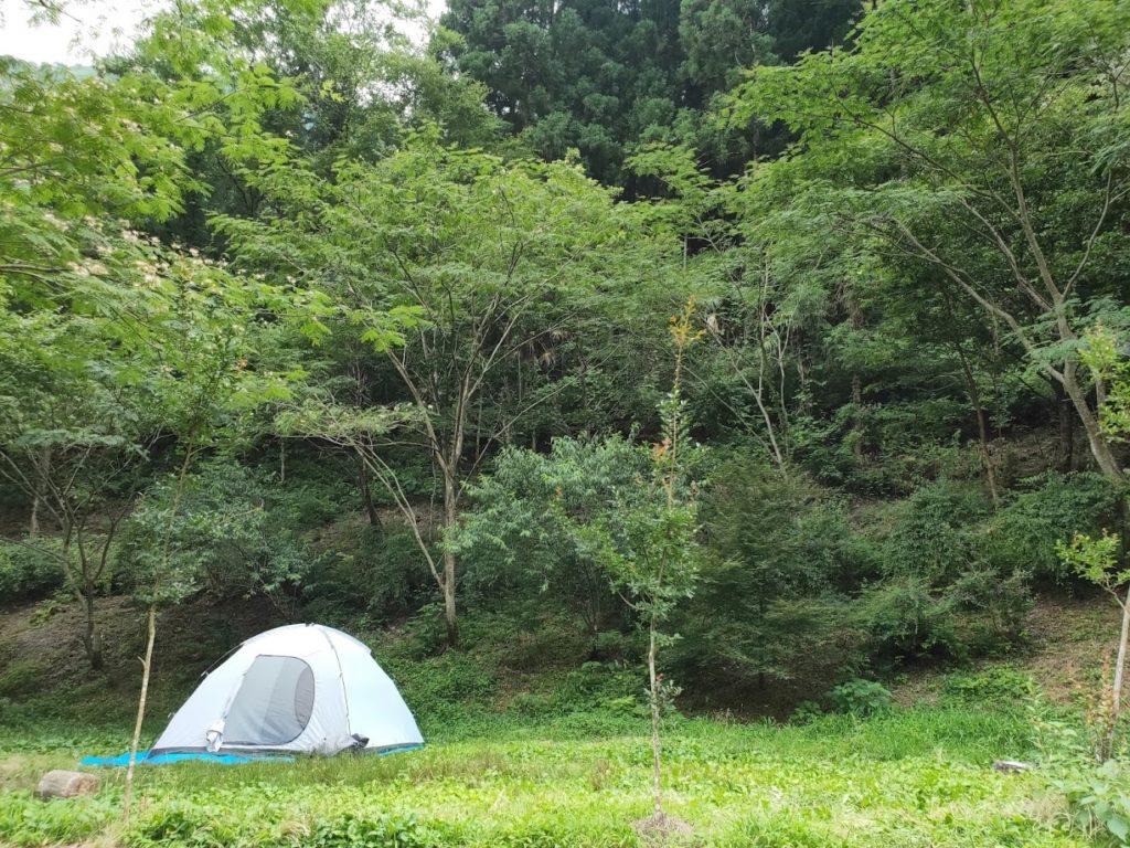 夢の森公園キャンプ場でのテント設営