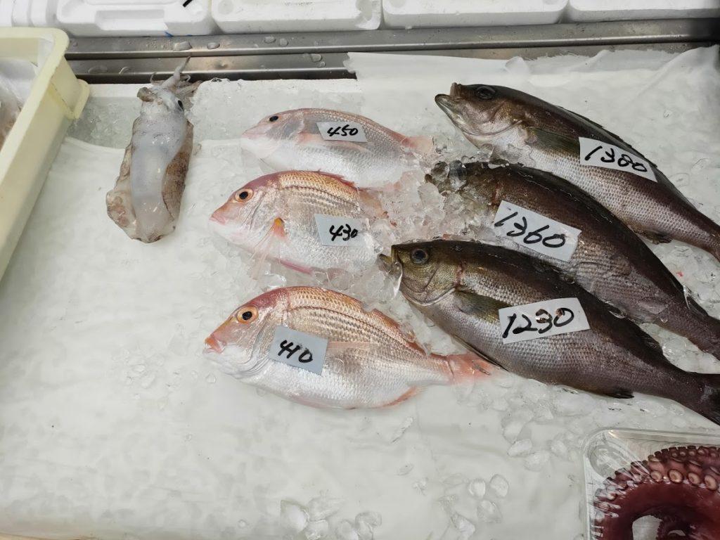久礼大正町市場の魚と値段