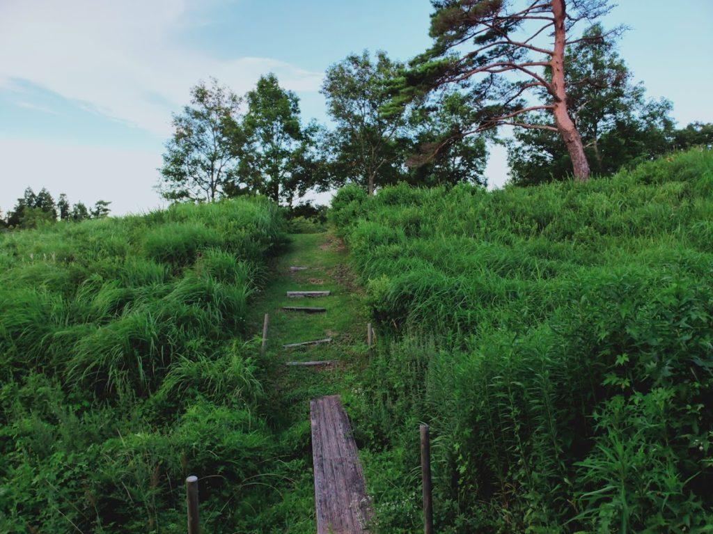 九重グリーンパーク泉水キャンプ村のキャンプ場画像2