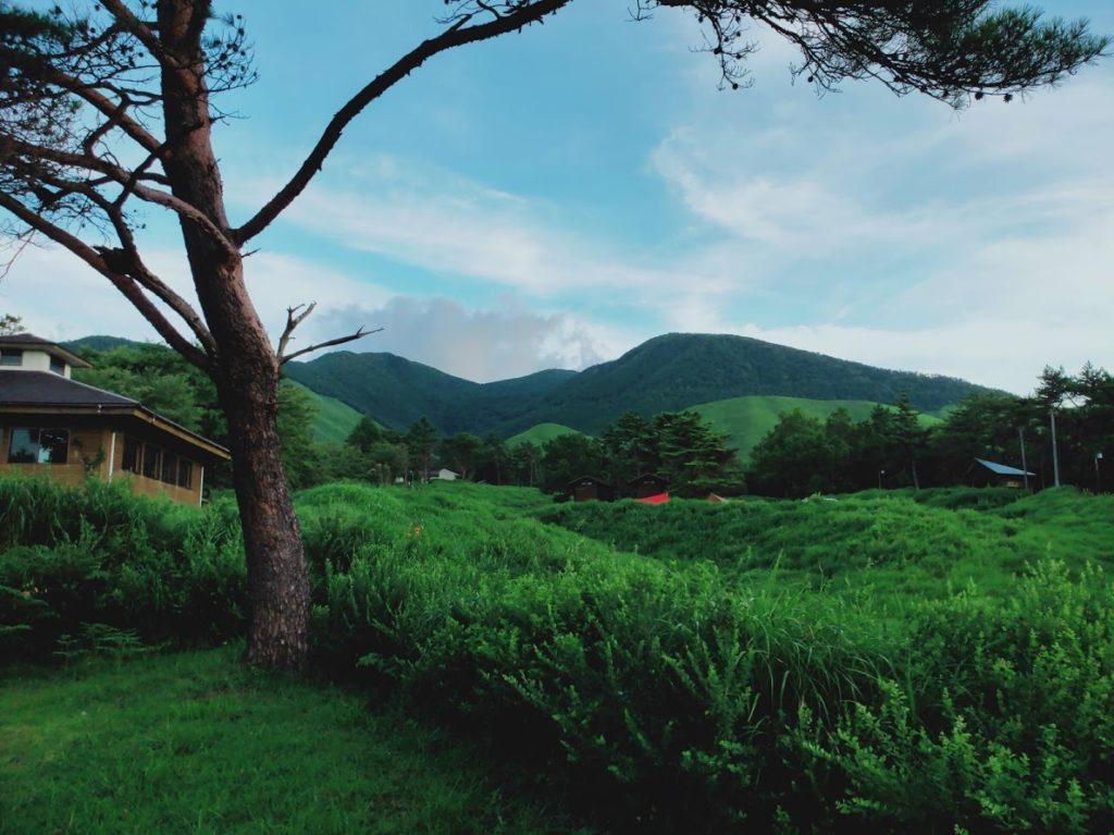 九重グリーンパーク泉水キャンプ村のキャンプ場画像3