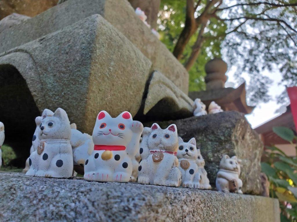 81番白峯寺の招き猫