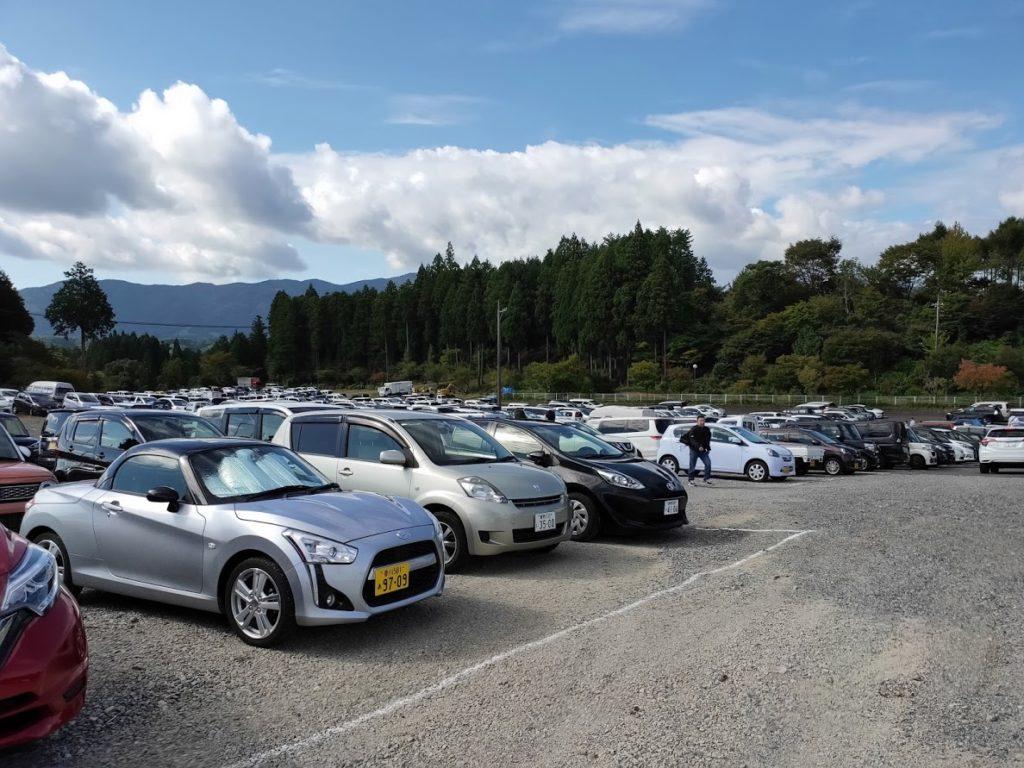 ヨーグルトサミットのたくさんの車