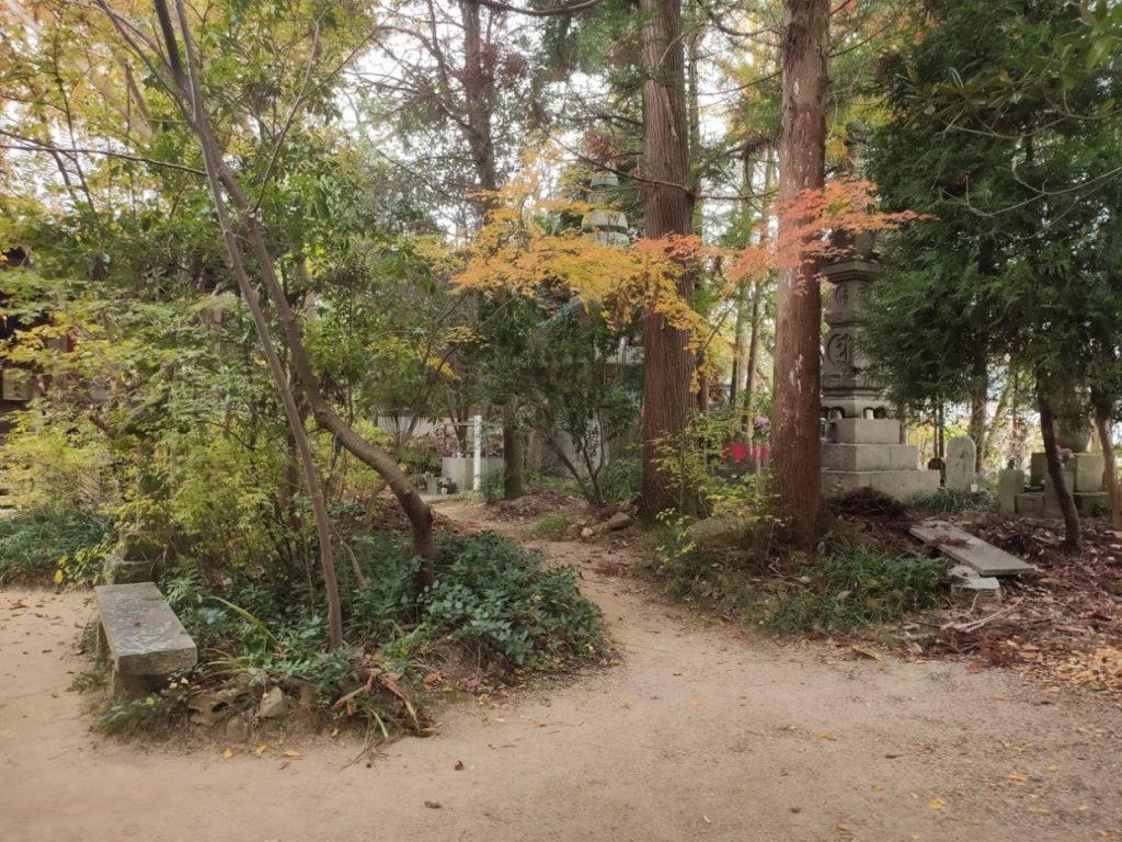 46番浄瑠璃寺の庭