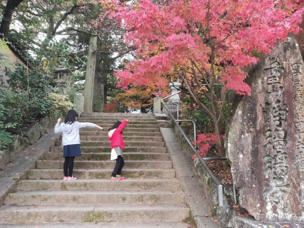 46番浄瑠璃寺の人文字