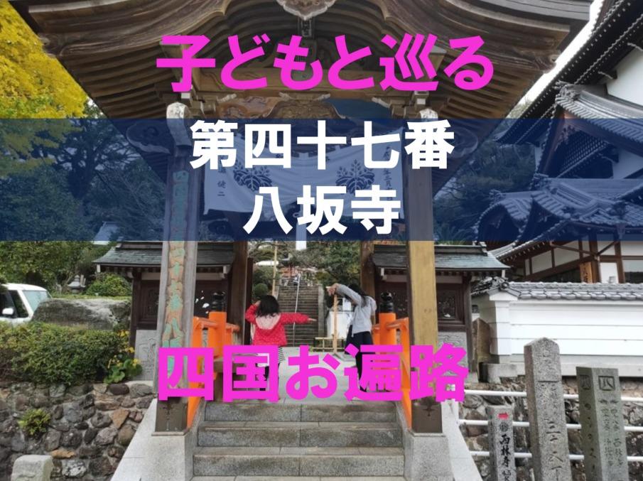 47番八坂寺のアイキャッチ画像