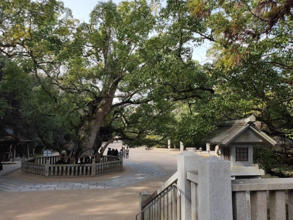 大山祇神社の景色