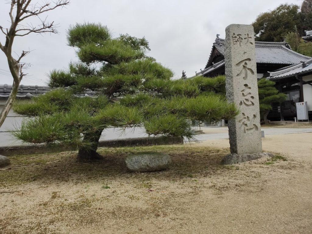 56番泰山寺の不忘松