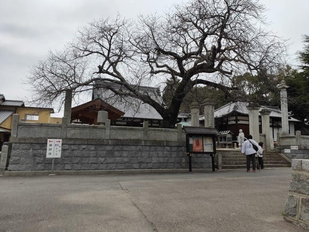 59番国分寺の景色