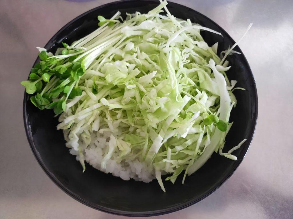 ふるさと納税のハンバーグご飯と野菜