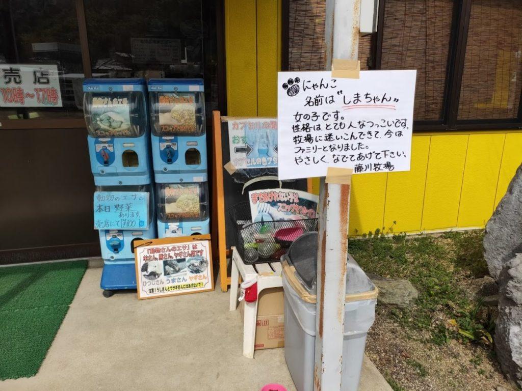 塩江ふじかわ牧場の猫情報