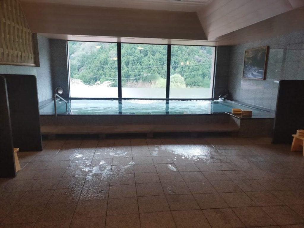 新祖谷温泉ホテルかずら橋の内風呂