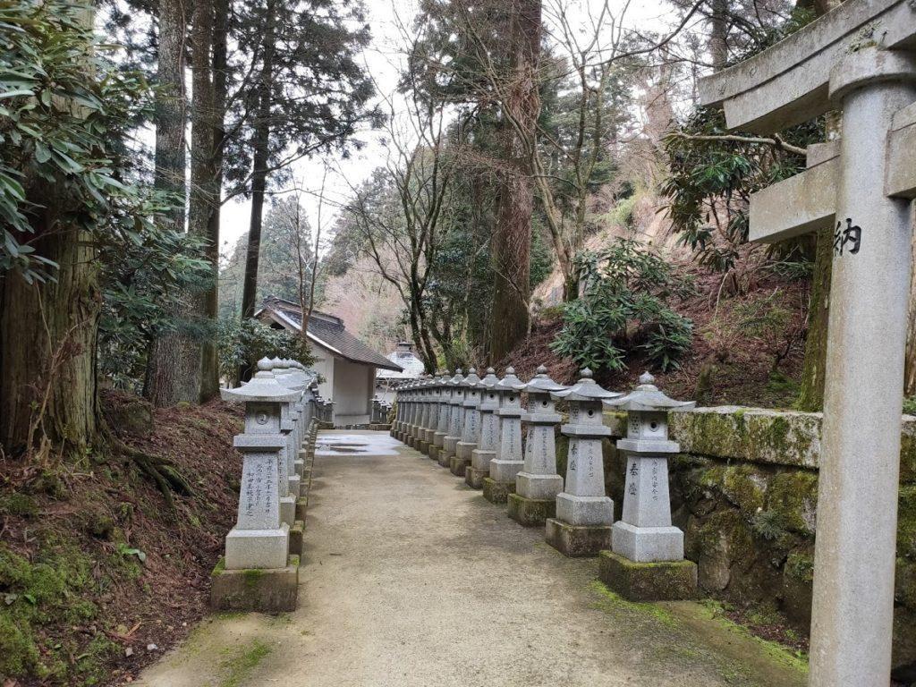 66番雲辺寺の道
