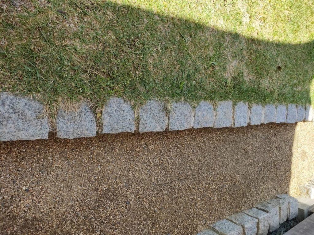 庭の芝生の現状1