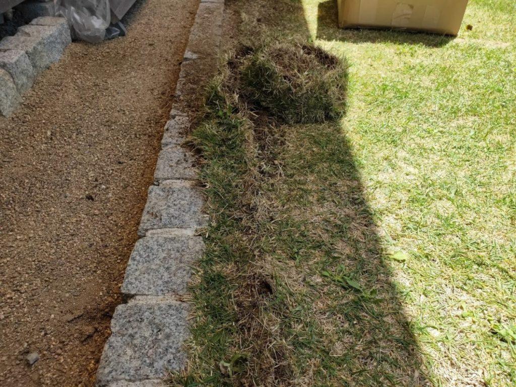 庭の芝生を狩る作業1