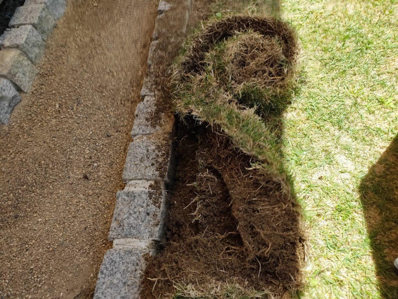 庭の芝生を狩る作業3