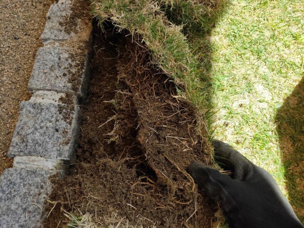 庭の芝生を狩る作業4