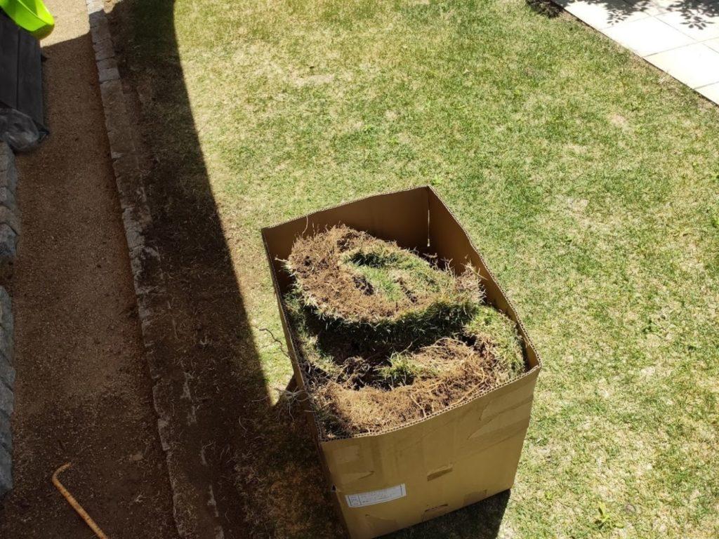 庭の芝生を狩った後のゴミ1