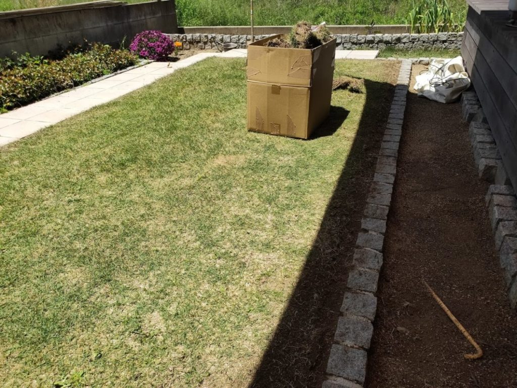 庭の芝生狩り作業終了1
