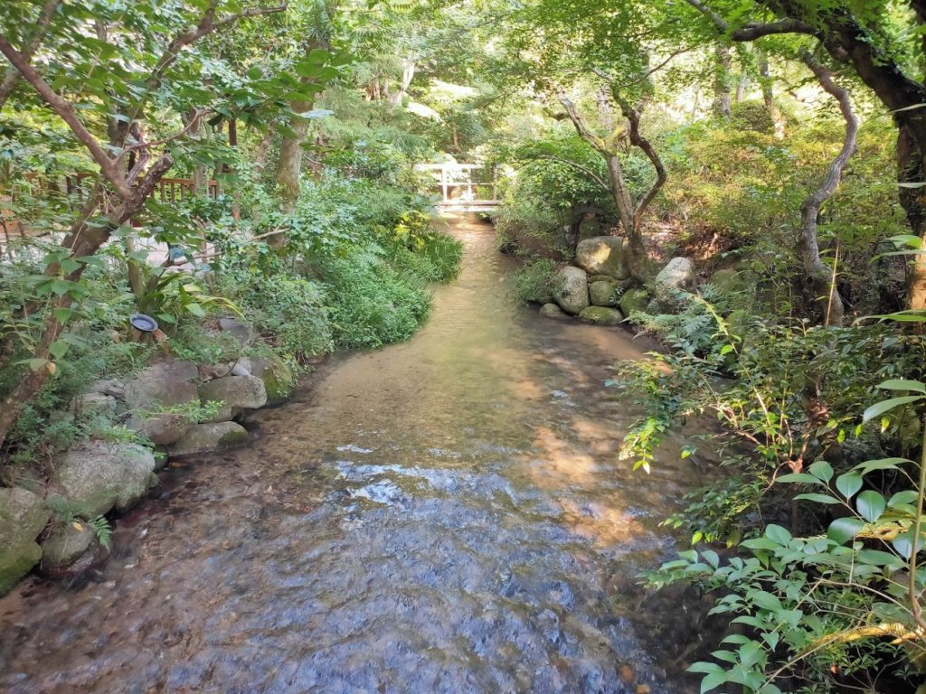 道後温泉ふなやの庭2