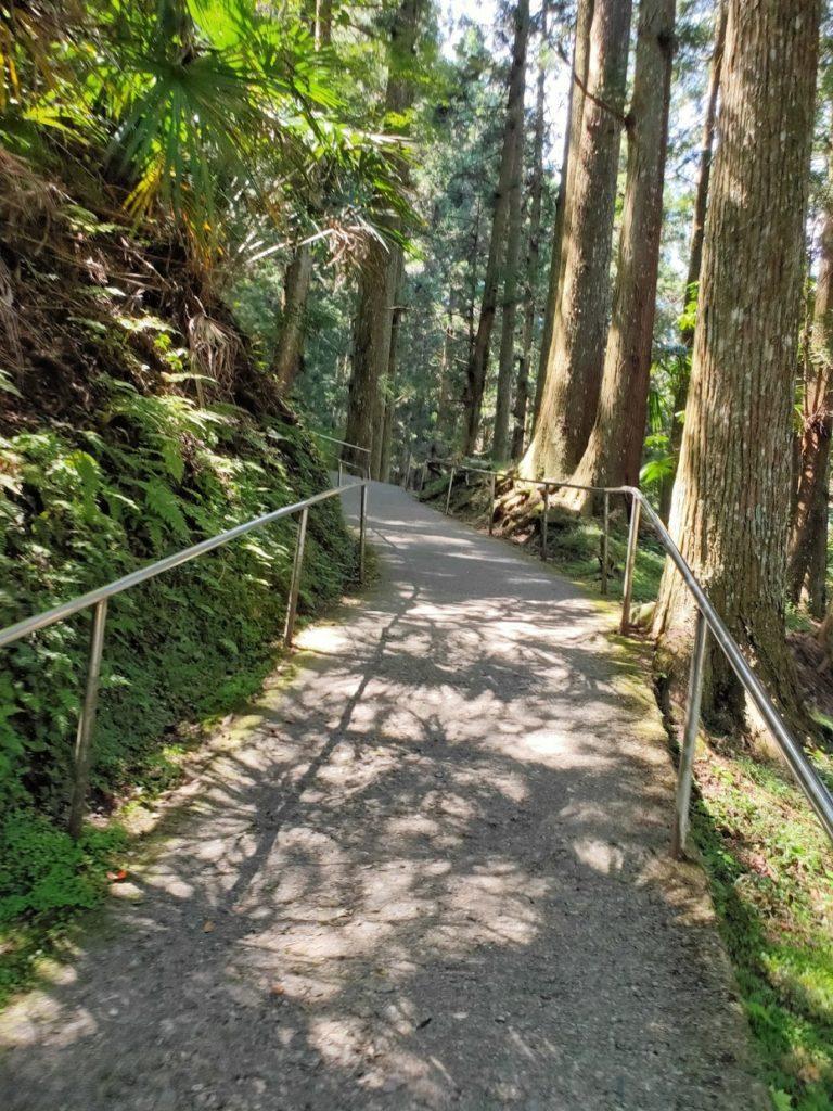 45番岩屋寺の入り口の道2