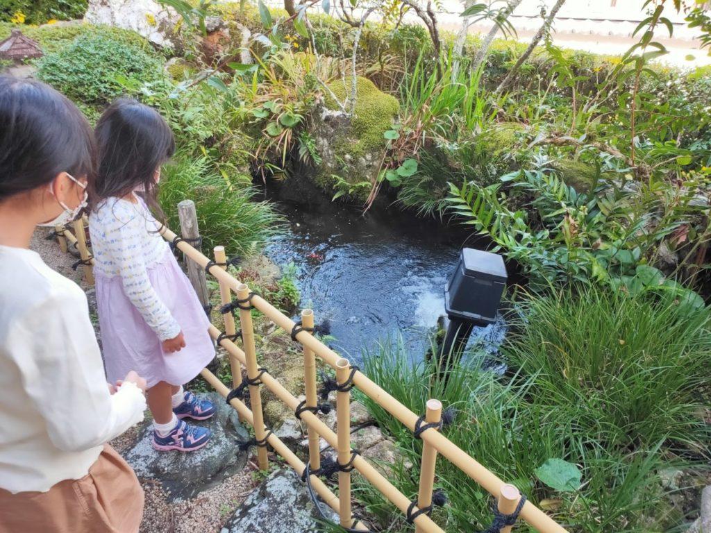 34番種間寺の池と子供